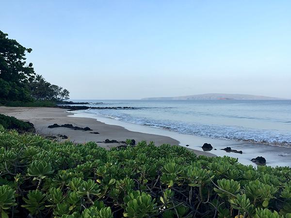 Maui Polo Beach