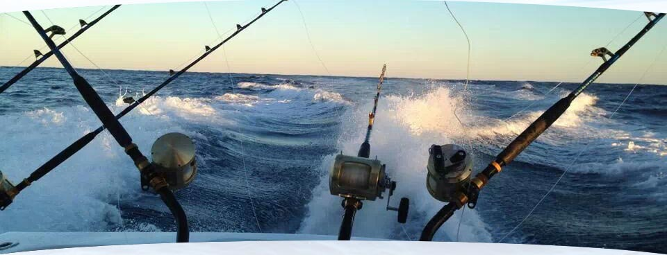 Top 5 tuesday wintertime in virginia beach for Va beach fishing