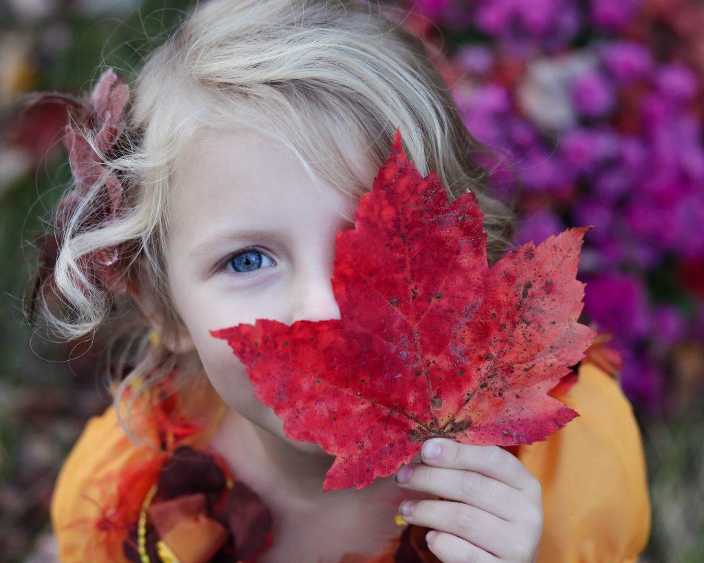 leaf-peeping season in new england