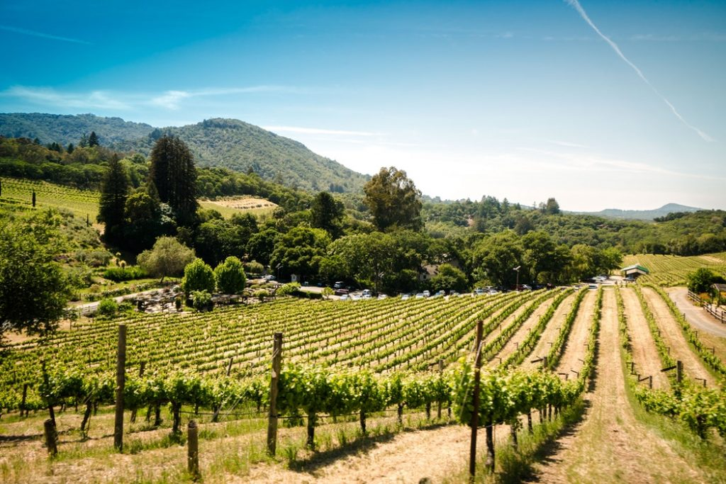 sonoma wine country stops to make
