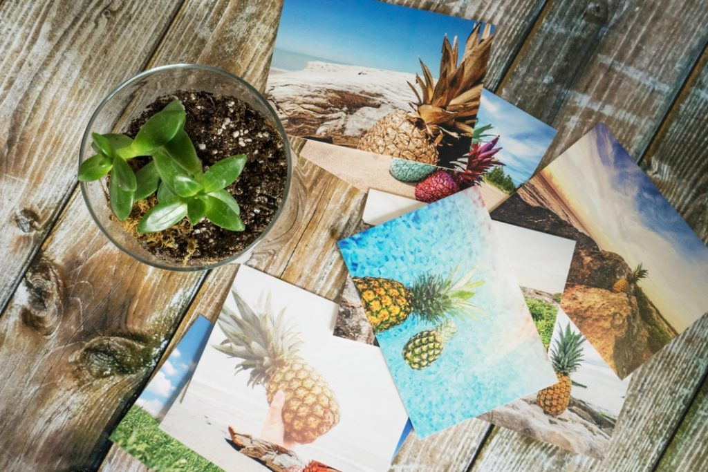 how to organize and share your family vacation photos