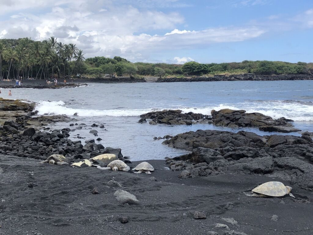places your family needs to explore when visiting the big island of hawaii