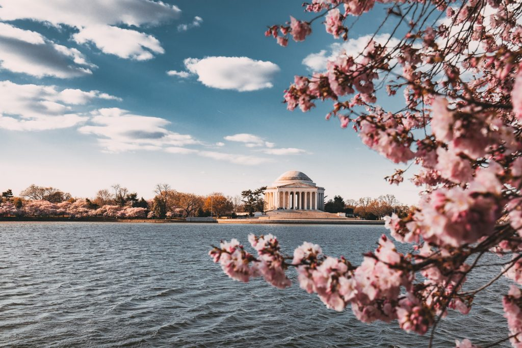 historical spring break destinations