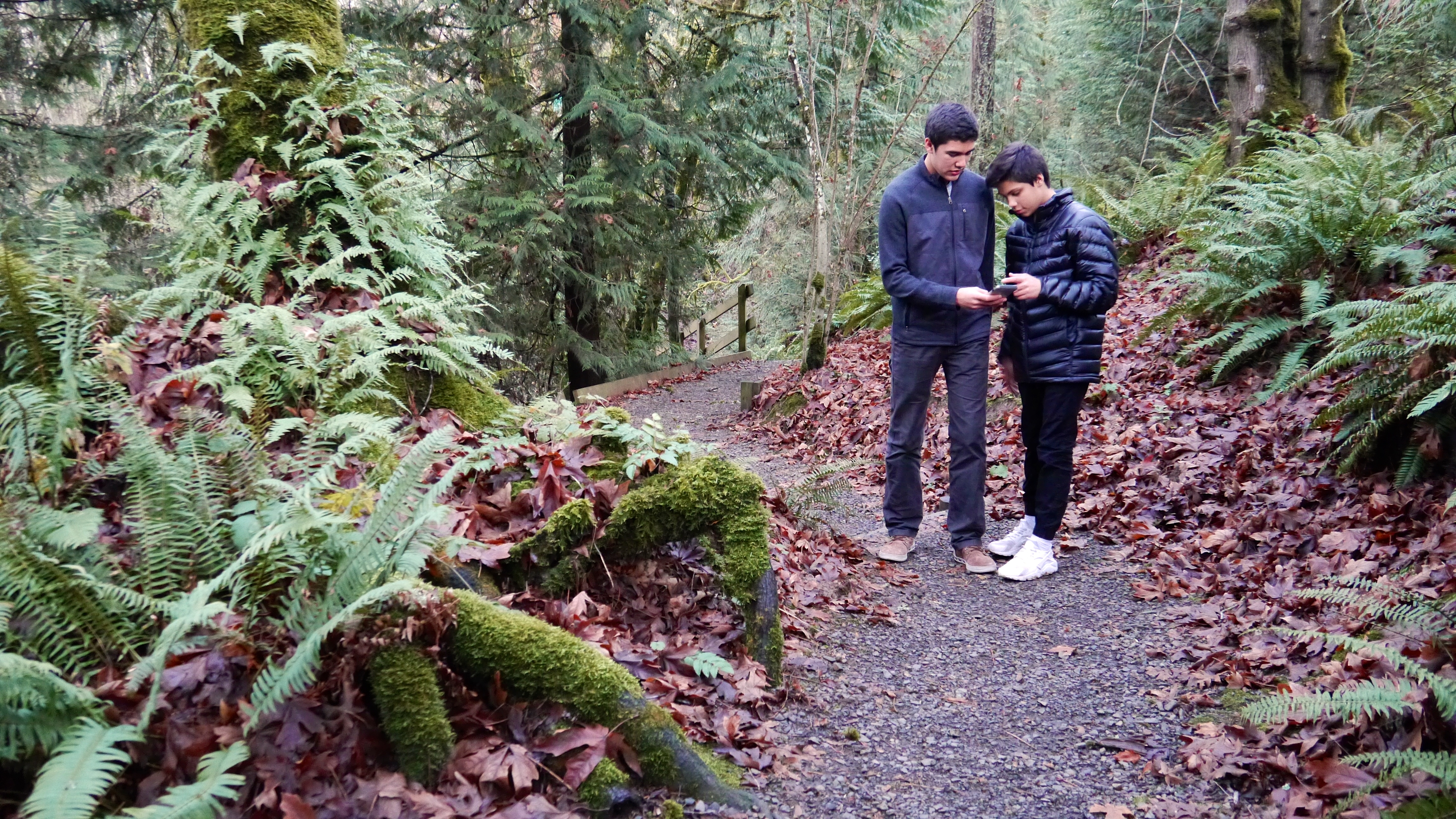 apps to engage your kids in nature